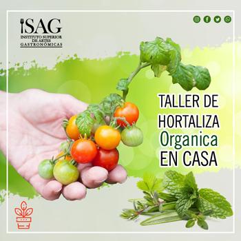 Taller de hortaliza organica en casa